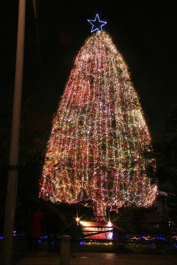 お台場クリスマス(Xmas)イルミネーション014