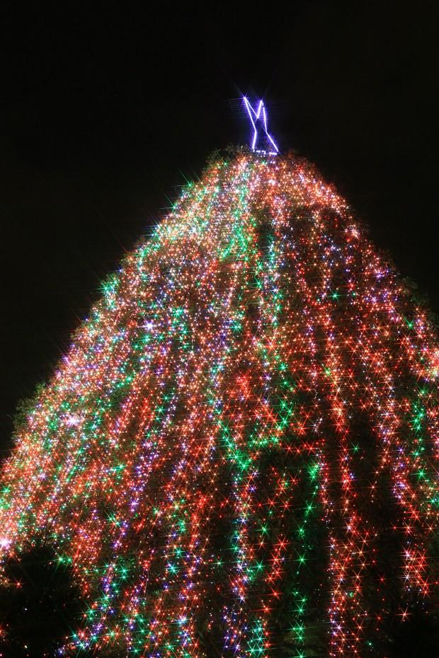 お台場クリスマス(Xmas)イルミネーション019