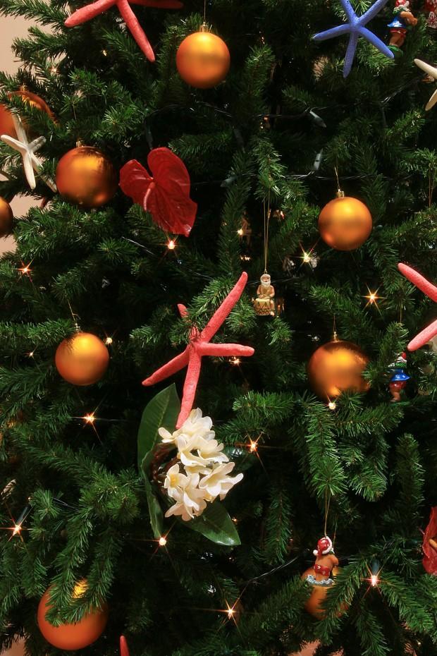 お台場クリスマス(Xmas)イルミネーション033