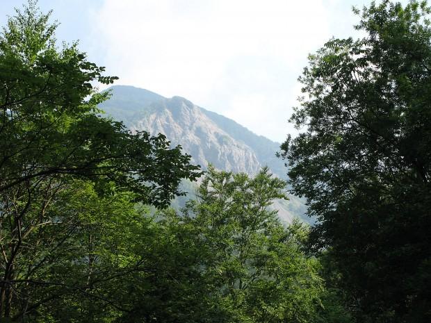 森林、湖、無料写真素材009