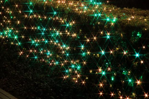 Xmas(クリスマス)イルミネーション002