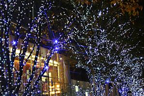 六本木ヒルズクリスマス(Xmas)イルミネーションサムネイル