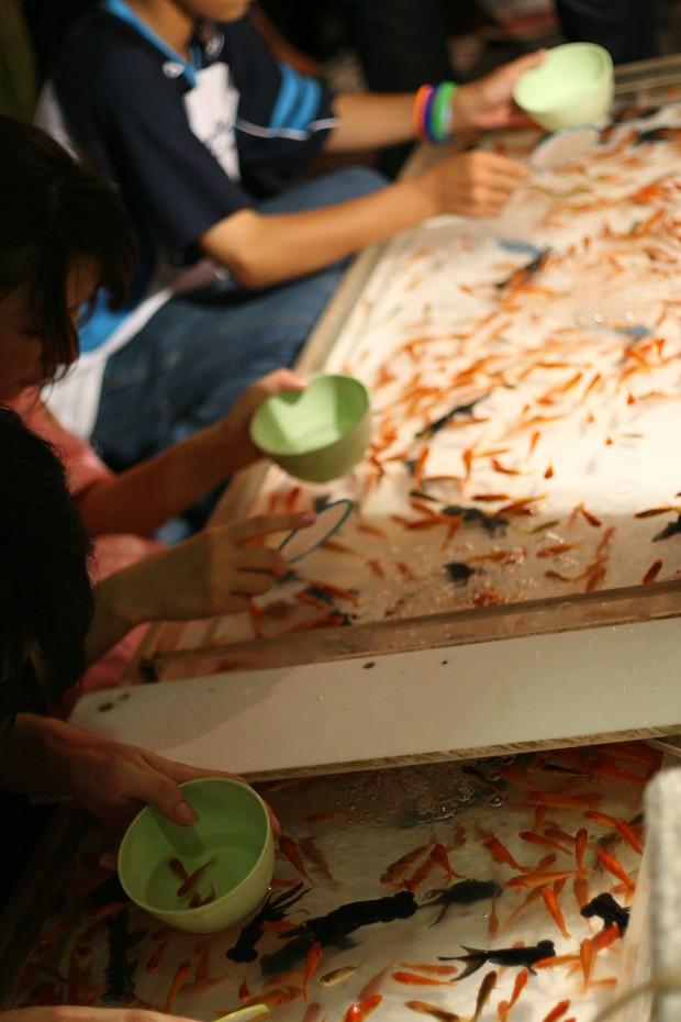 祭り(金魚すくい)フリー写真素材026