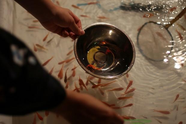 祭り(金魚すくい)フリー写真素材029