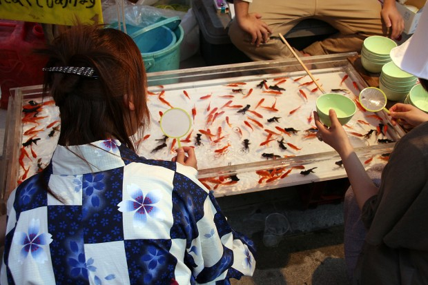 祭り(金魚すくい)フリー写真素材066