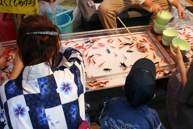 祭り(金魚すくい)フリー写真素材068