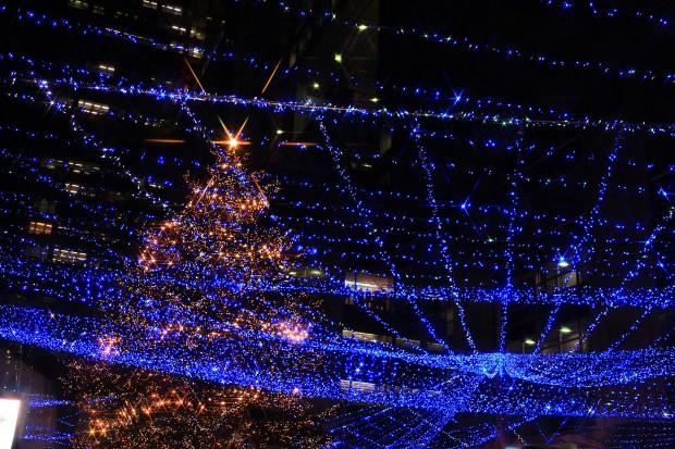 お台場クリスマス(Xmas)イルミネーション066