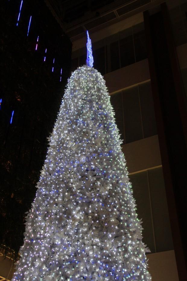 お台場クリスマス(Xmas)イルミネーション075