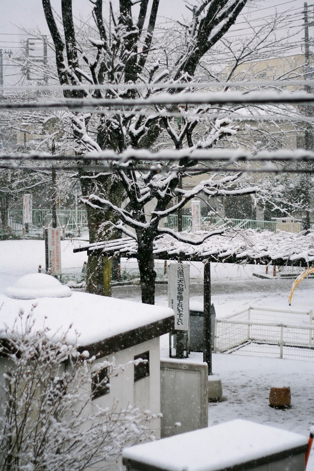 雪景色026