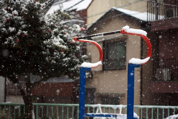雪景色042