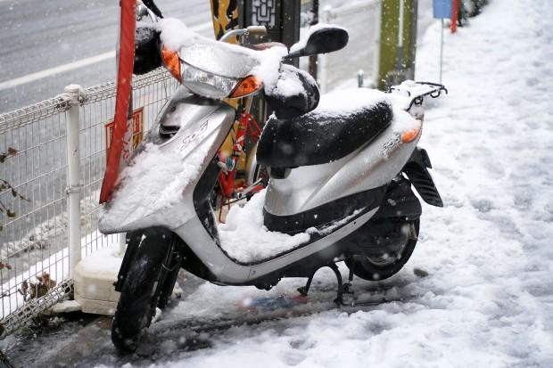 雪景色065