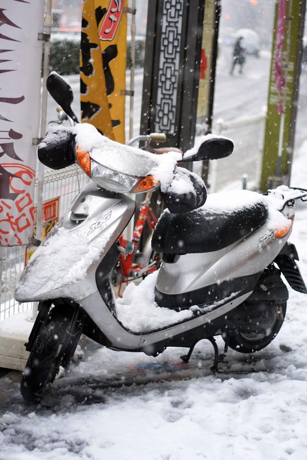 雪景色066