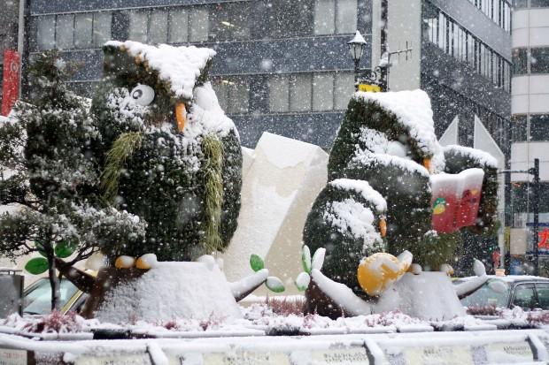 雪景色076