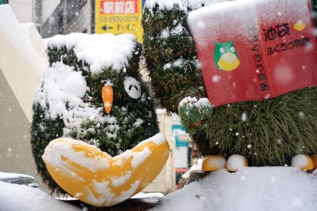 雪景色086