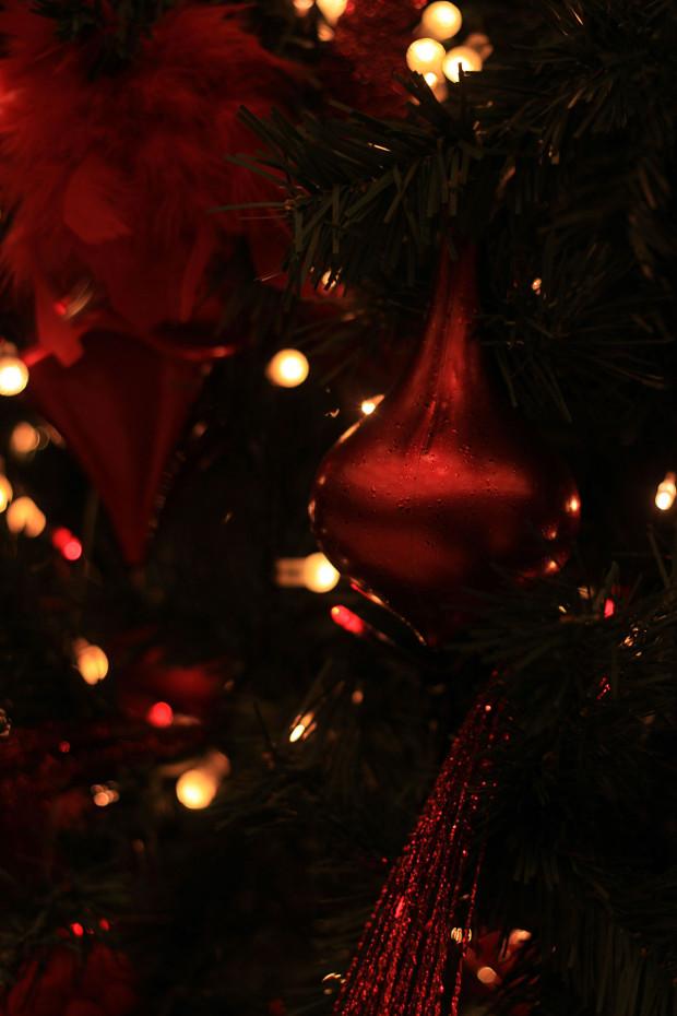 後楽園クリスマス(Xmas)イルミネーション113