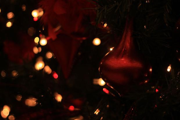 後楽園クリスマス(Xmas)イルミネーション114