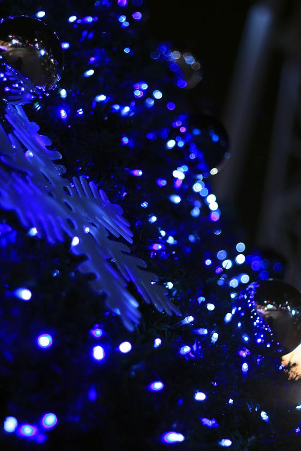 後楽園クリスマス(Xmas)イルミネーション116