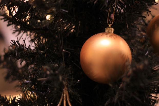 後楽園クリスマス(Xmas)イルミネーション117