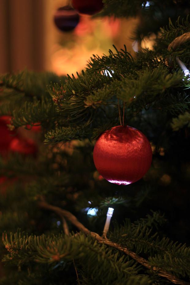 後楽園クリスマス(Xmas)イルミネーション125