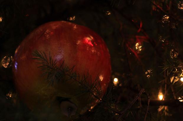 後楽園クリスマス(Xmas)イルミネーション126