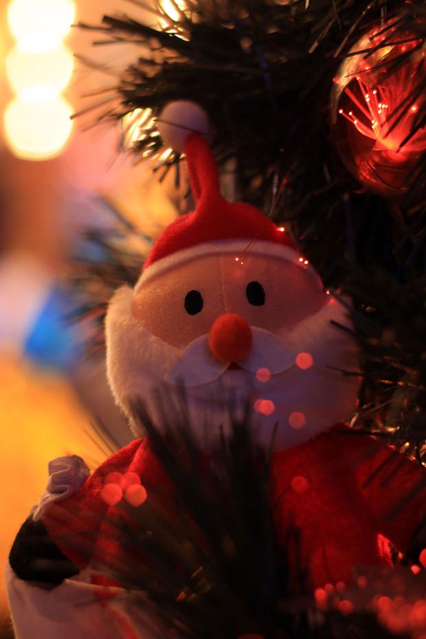 後楽園クリスマス(Xmas)イルミネーション131