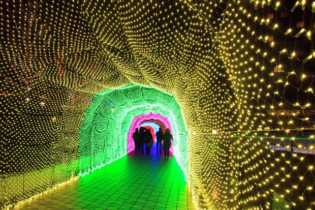 後楽園クリスマス(Xmas)イルミネーション146