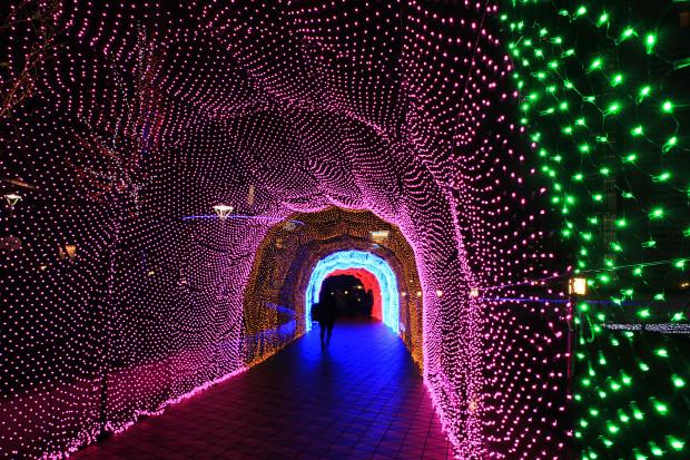 後楽園クリスマス(Xmas)イルミネーション147