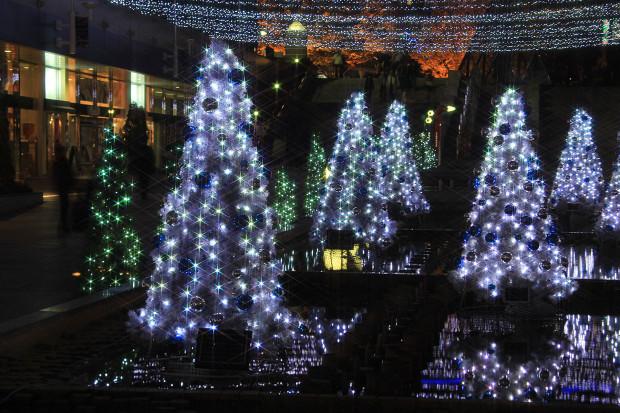 後楽園クリスマス(Xmas)イルミネーション154