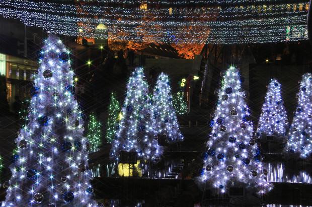 後楽園クリスマス(Xmas)イルミネーション155