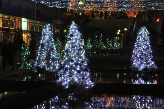 後楽園クリスマス(Xmas)イルミネーション158