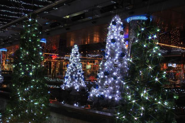 後楽園クリスマス(Xmas)イルミネーション159
