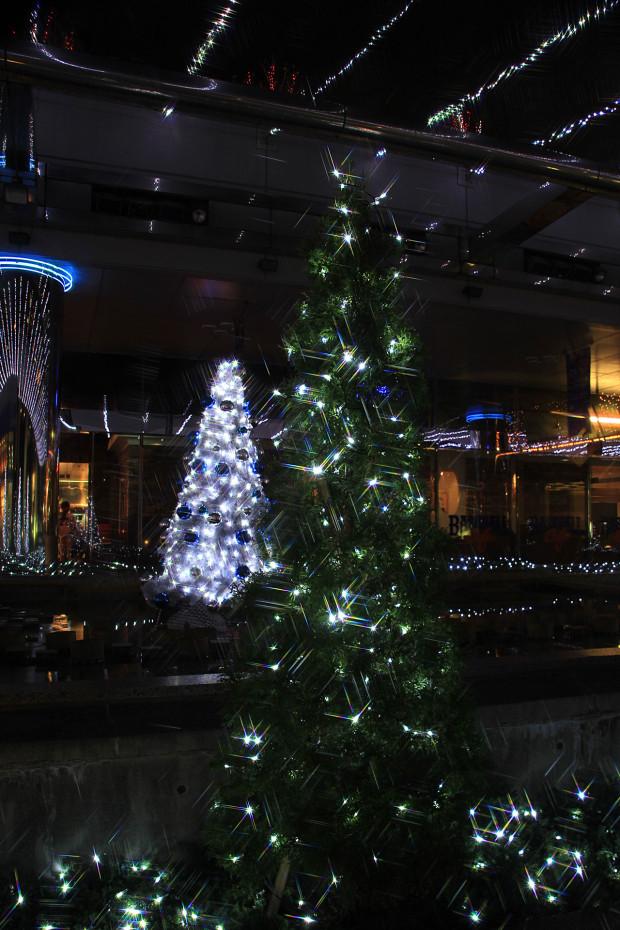 後楽園クリスマス(Xmas)イルミネーション161