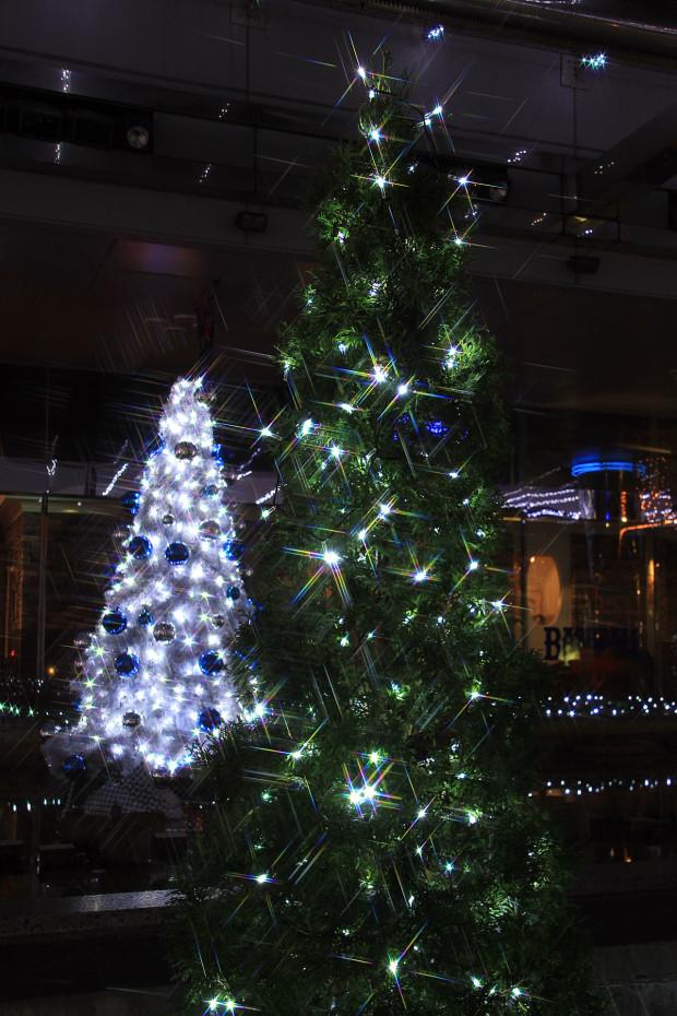 後楽園クリスマス(Xmas)イルミネーション162