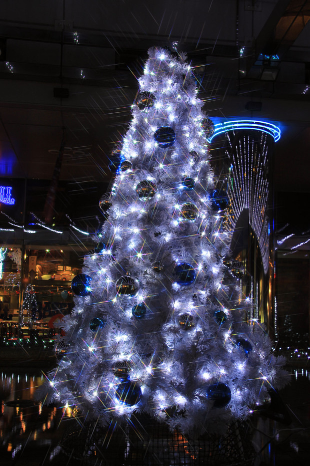 後楽園クリスマス(Xmas)イルミネーション163