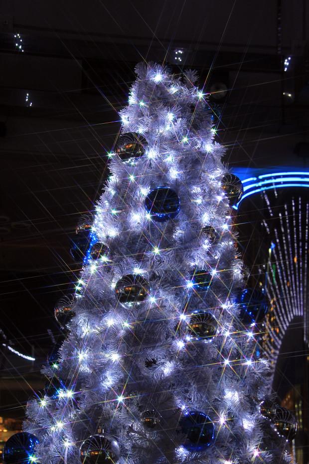 後楽園クリスマス(Xmas)イルミネーション164