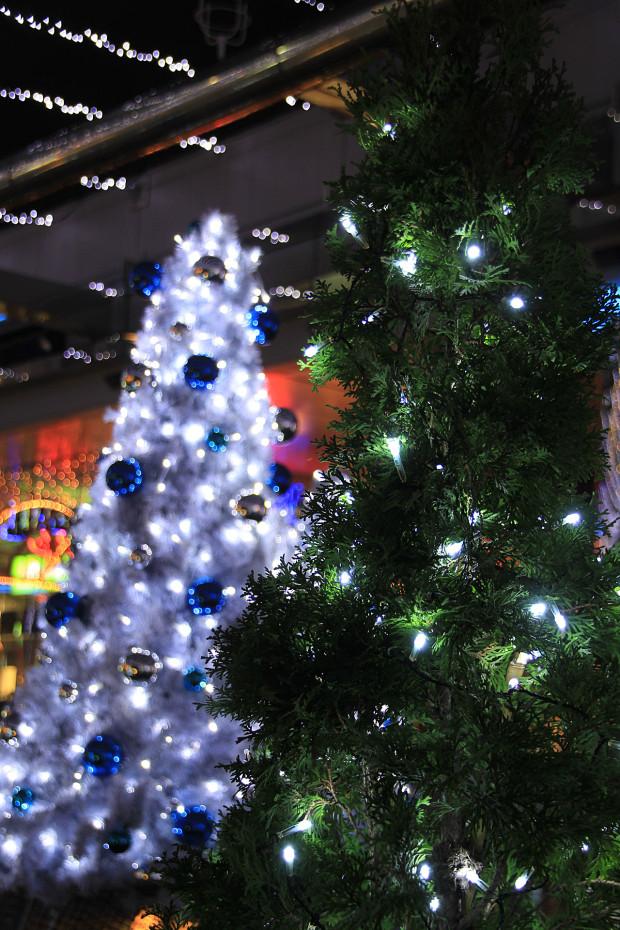 後楽園クリスマス(Xmas)イルミネーション167