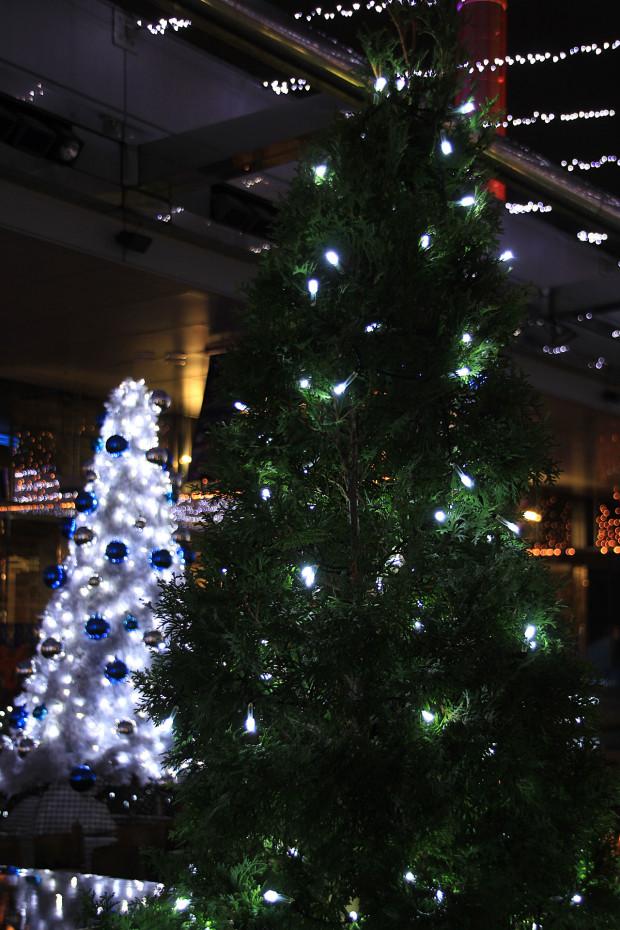 後楽園クリスマス(Xmas)イルミネーション168