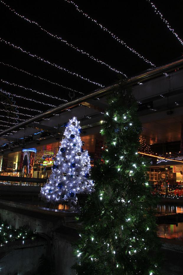 後楽園クリスマス(Xmas)イルミネーション169