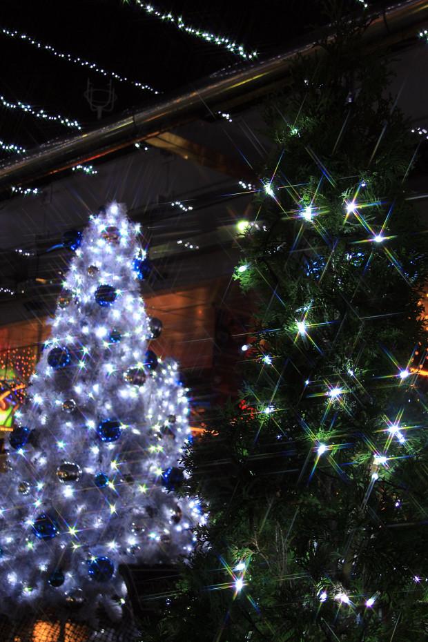 後楽園クリスマス(Xmas)イルミネーション171