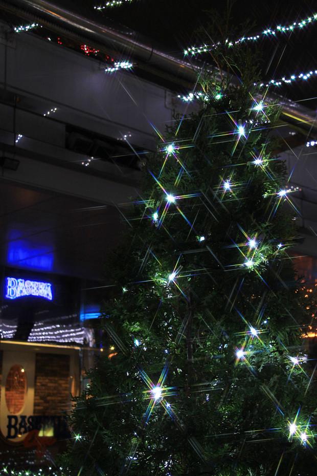 後楽園クリスマス(Xmas)イルミネーション172