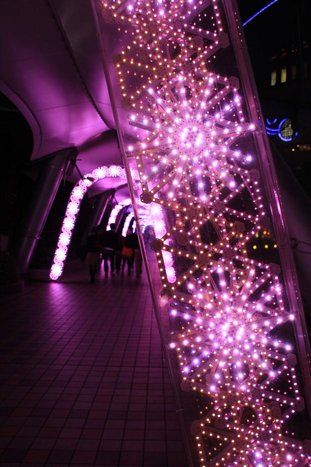 後楽園クリスマス(Xmas)イルミネーション188