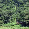 滝、森林(白色の滝)サムネイル