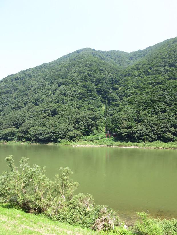 滝、森林(白色の滝)011