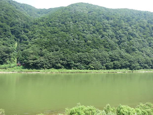 滝、森林(白色の滝)013