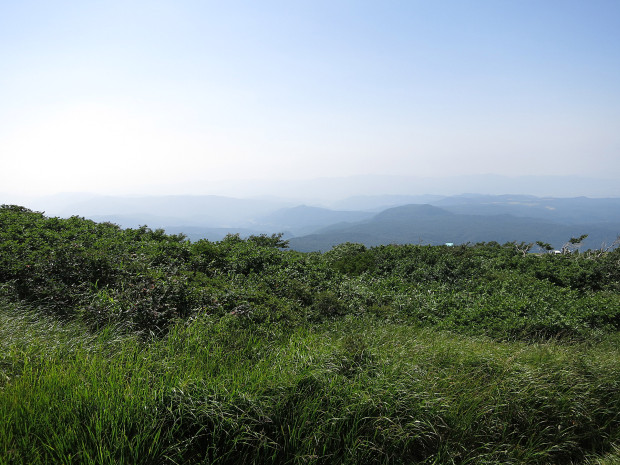 草原|月山八合目、弥陀ヶ原湿原 014