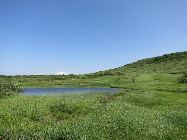 草原|月山八合目、弥陀ヶ原湿原 023