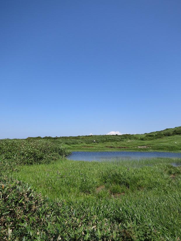 草原|月山八合目、弥陀ヶ原湿原 024