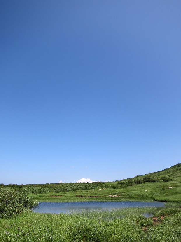 草原|月山八合目、弥陀ヶ原湿原 025