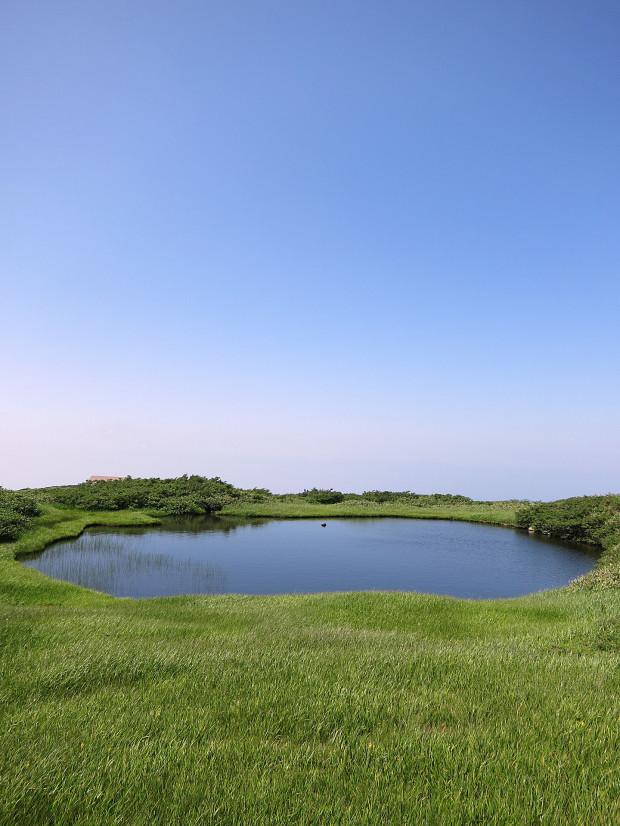 草原|月山八合目、弥陀ヶ原湿原 028