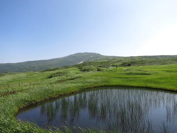 草原|月山八合目、弥陀ヶ原湿原 040